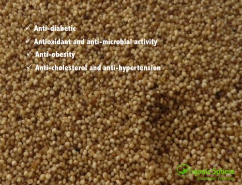 Buchi Method Processed Millets